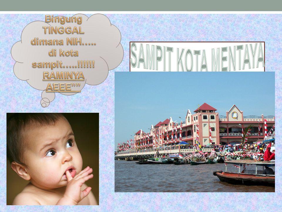 Sampit adalah Ibu kota kabupaten Kotawaringin Timur di Kalimantan Tengah, Indonesia. Sampit merupakan salah satu permukiman tertua di Kabupaten Kotawa