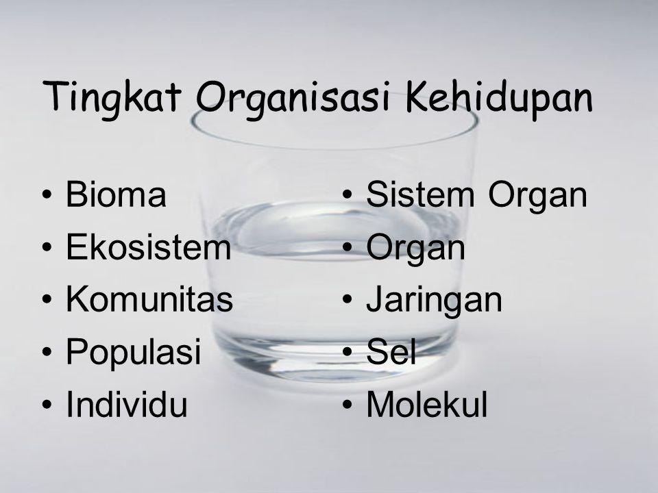 Tingkat Organisasi Kehidupan Bioma Ekosistem Komunitas Populasi Individu Sistem Organ Organ Jaringan Sel Molekul