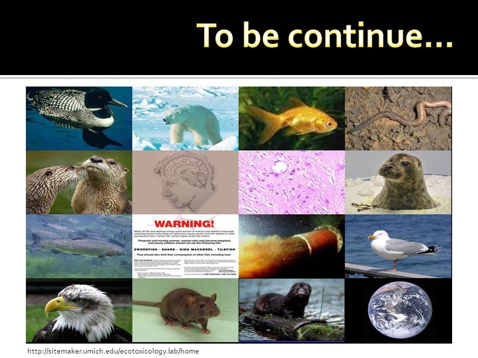 http://sitemaker.umich.edu/ecotoxicology.lab/home