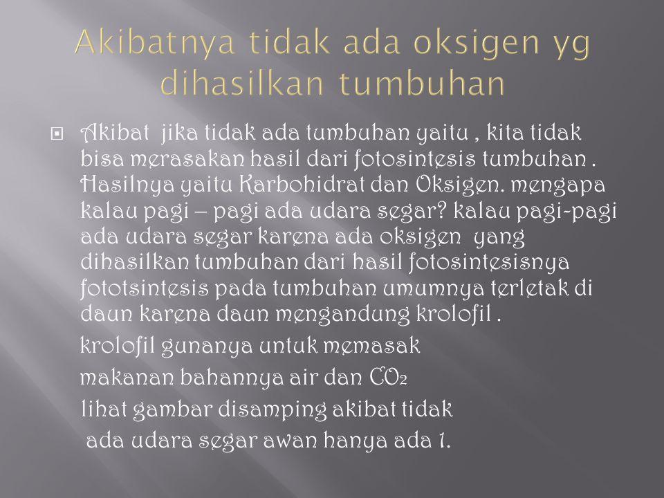  Akibat jika tidak ada tumbuhan yaitu, kita tidak bisa merasakan hasil dari fotosintesis tumbuhan. Hasilnya yaitu Karbohidrat dan Oksigen. mengapa ka