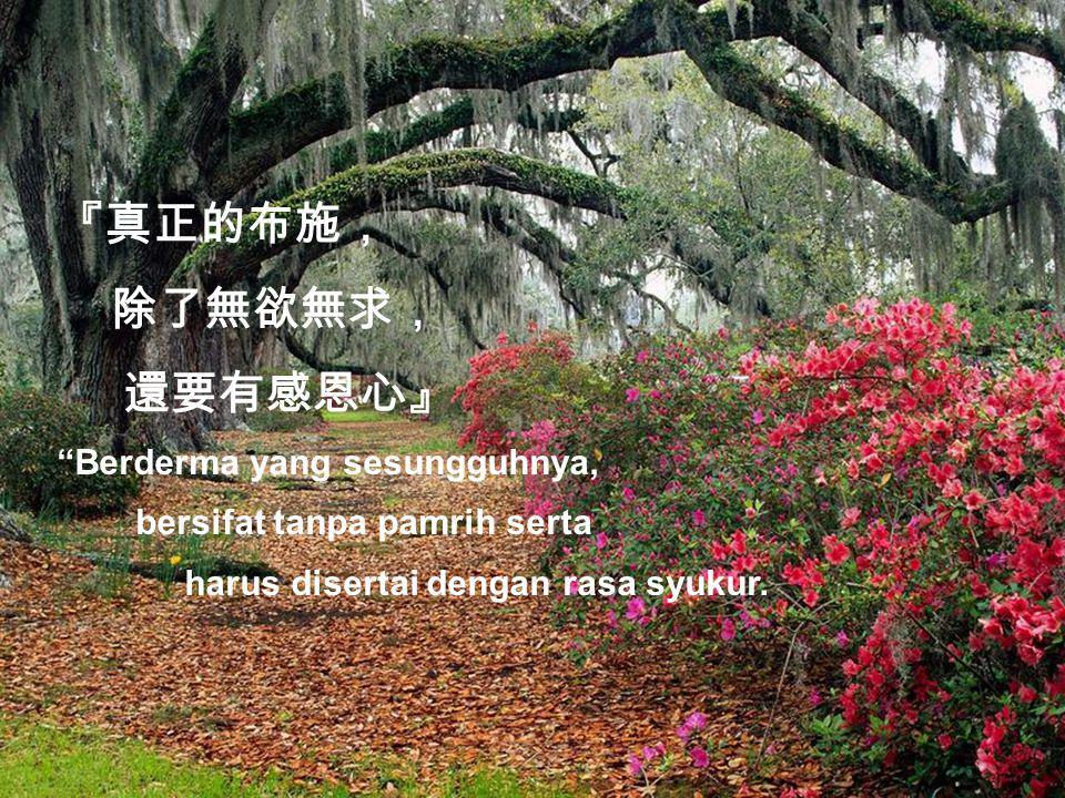 『真正的布施, 除了無欲無求, 還要有感恩心』 Berderma yang sesungguhnya, bersifat tanpa pamrih serta harus disertai dengan rasa syukur.