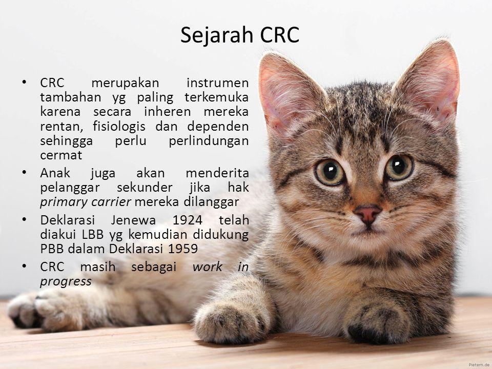 Sejarah CRC CRC merupakan instrumen tambahan yg paling terkemuka karena secara inheren mereka rentan, fisiologis dan dependen sehingga perlu perlindun