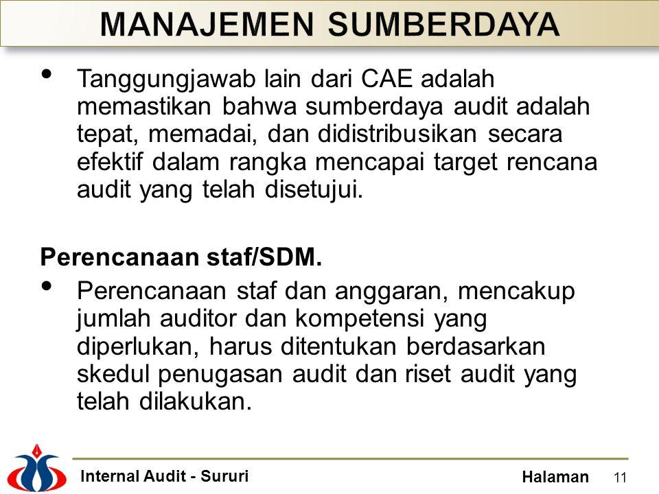 Internal Audit - Sururi Halaman Tanggungjawab lain dari CAE adalah memastikan bahwa sumberdaya audit adalah tepat, memadai, dan didistribusikan secara