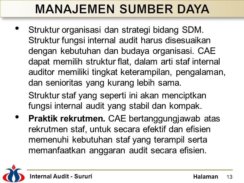 Internal Audit - Sururi Halaman Struktur organisasi dan strategi bidang SDM. Struktur fungsi internal audit harus disesuaikan dengan kebutuhan dan bud