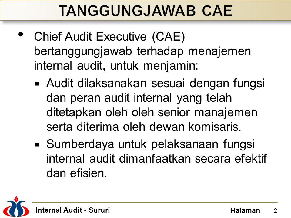Internal Audit - Sururi Halaman Chief Audit Executive (CAE) bertanggungjawab terhadap menajemen internal audit, untuk menjamin:  Audit dilaksanakan s