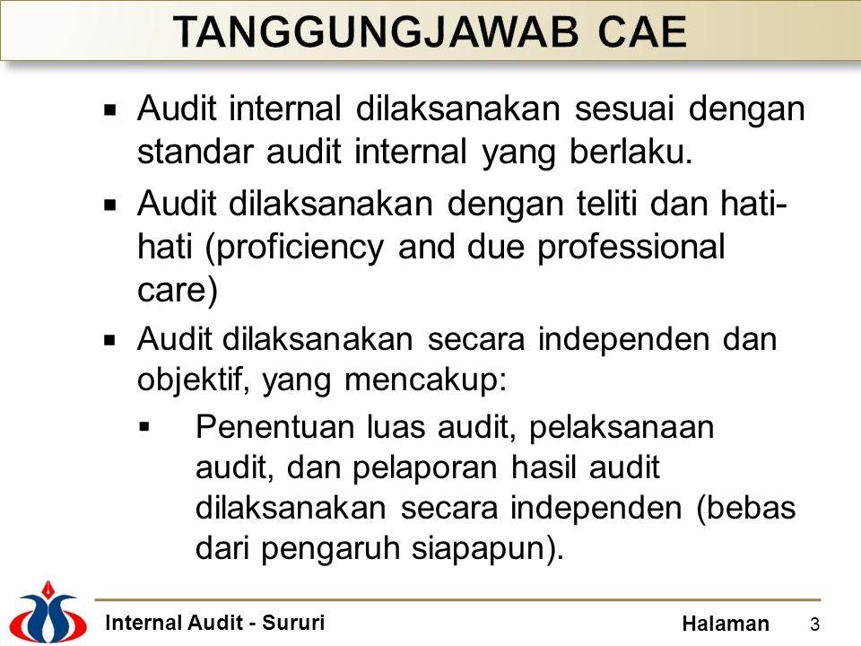 Internal Audit - Sururi Halaman  Audit internal dilaksanakan sesuai dengan standar audit internal yang berlaku.  Audit dilaksanakan dengan teliti da