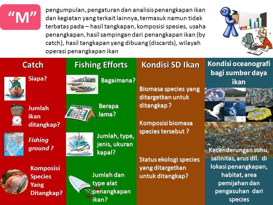 """""""M"""" pengumpulan, pengaturan dan analisis penangkapan ikan dan kegiatan yang terkait lainnya, termasuk namun tidak terbatas pada – hasil tangkapan, kom"""