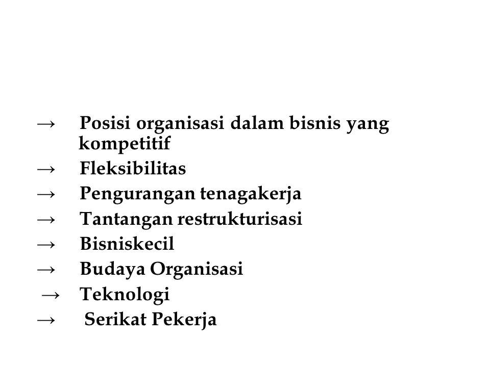 → Posisi organisasi dalam bisnis yang kompetitif → Fleksibilitas → Pengurangan tenagakerja → Tantangan restrukturisasi → Bisniskecil → Budaya Organisa