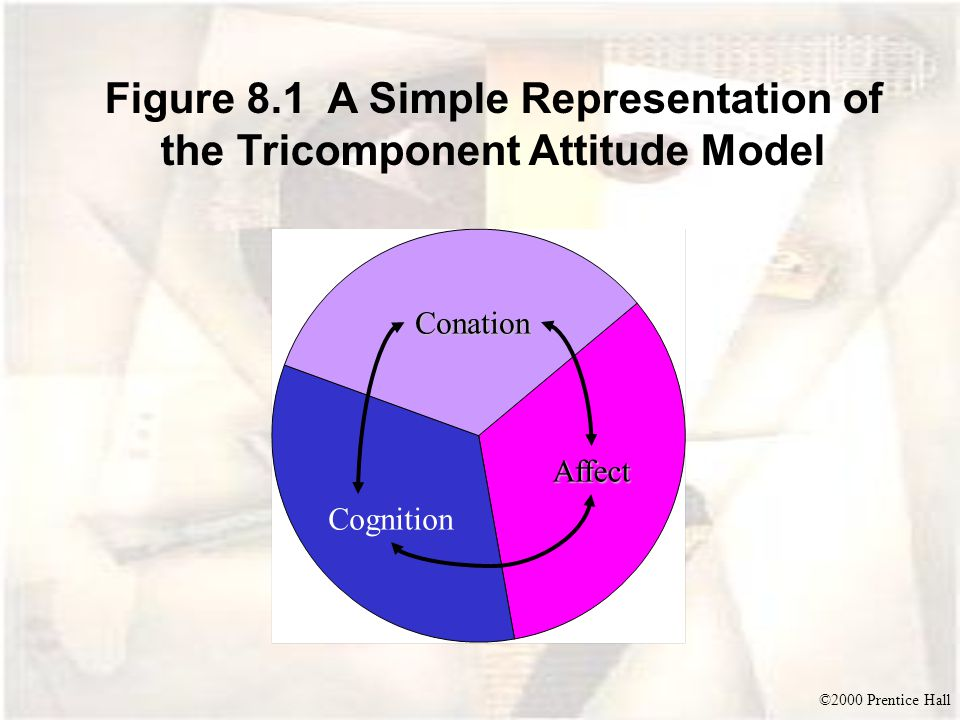 ©2000 Prentice Hall The Tricomponent Model Cognitive Component : Komponen kognitif: –The knowledge and perceptions that are acquired by a combination of direct experience with the attitude object and related information from various sources.