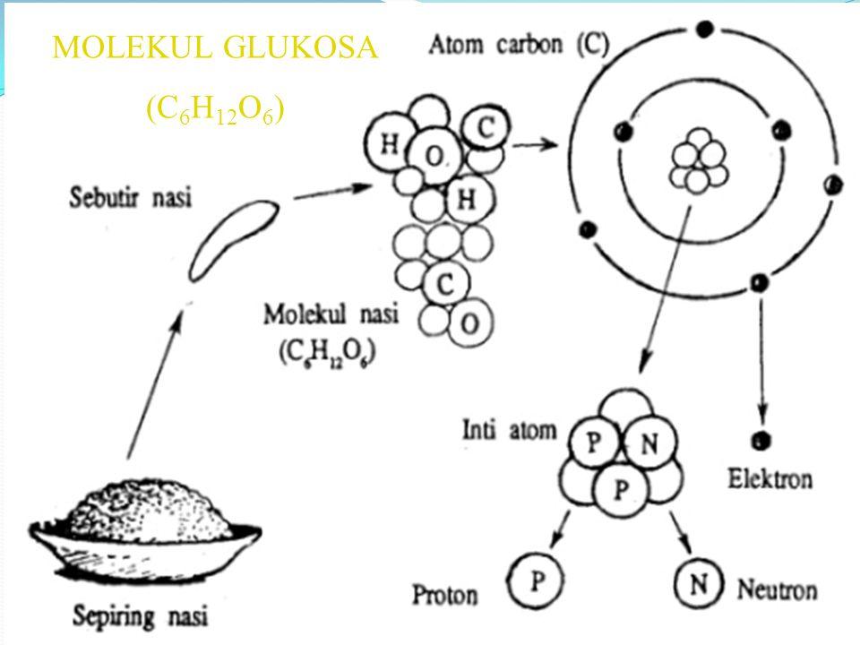 MOLEKUL GLUKOSA (C 6 H 12 O 6 )