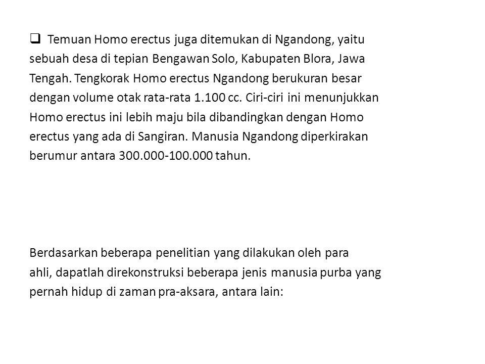  Temuan Homo erectus juga ditemukan di Ngandong, yaitu sebuah desa di tepian Bengawan Solo, Kabupaten Blora, Jawa Tengah. Tengkorak Homo erectus Ngan