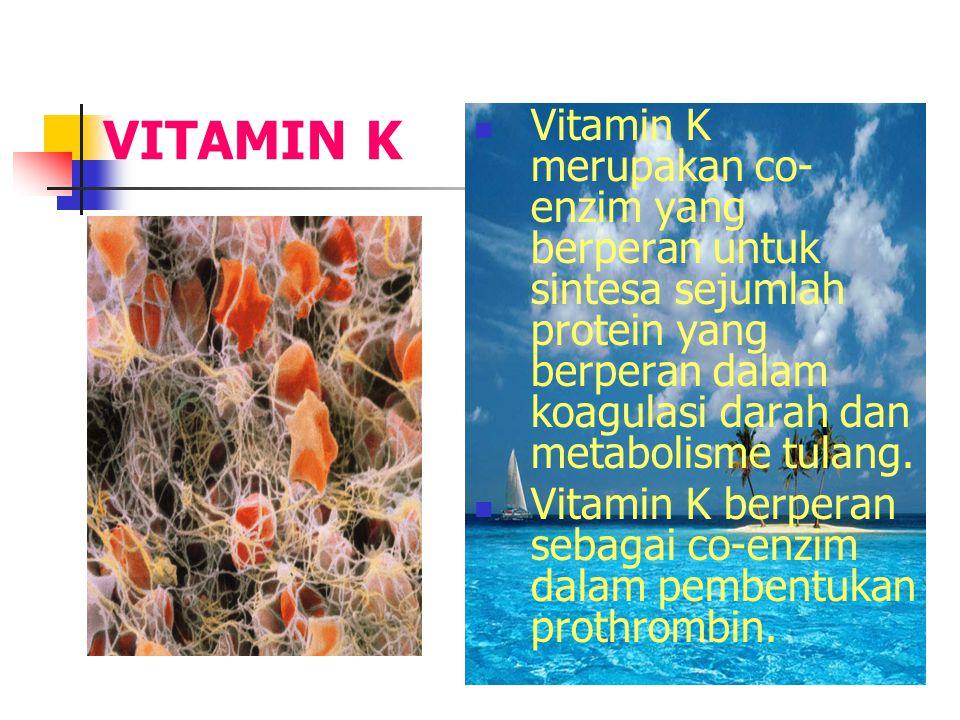 VITAMIN K Vitamin K merupakan co- enzim yang berperan untuk sintesa sejumlah protein yang berperan dalam koagulasi darah dan metabolisme tulang.