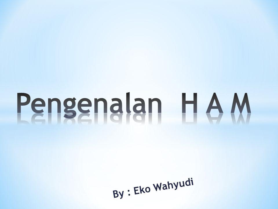 By : Eko Wahyudi