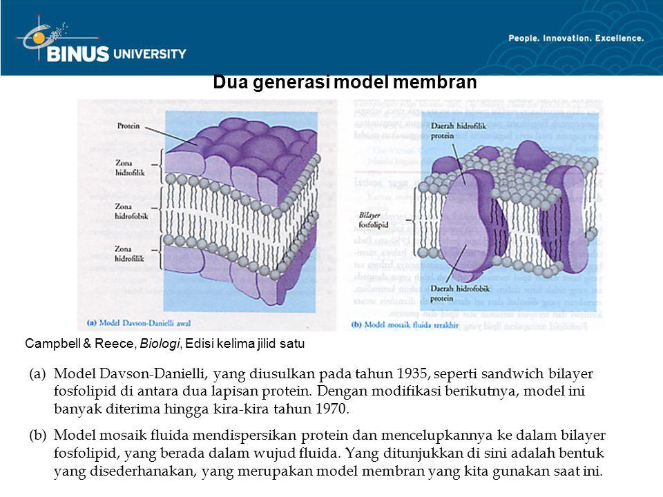 Dua generasi model membran (a)Model Davson-Danielli, yang diusulkan pada tahun 1935, seperti sandwich bilayer fosfolipid di antara dua lapisan protein