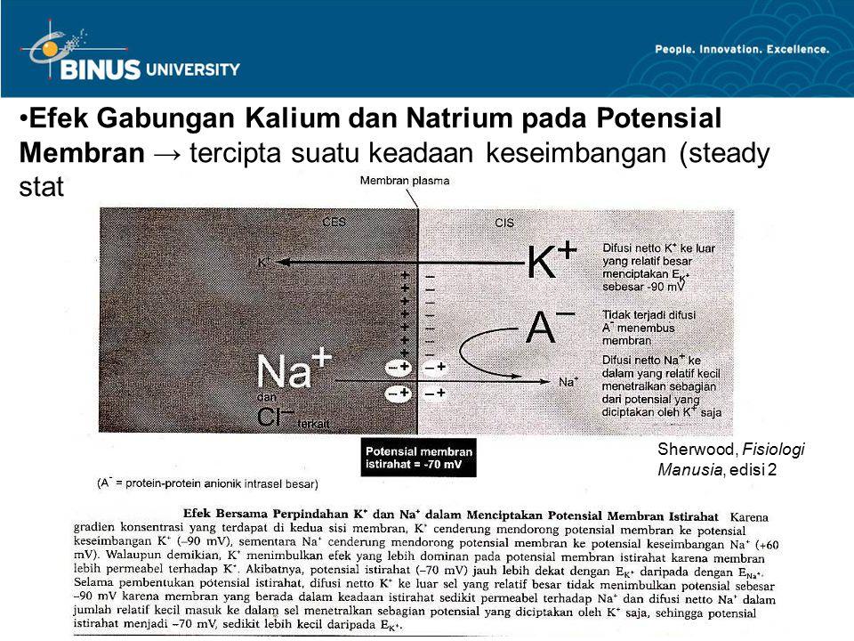 Efek Gabungan Kalium dan Natrium pada Potensial Membran → tercipta suatu keadaan keseimbangan (steady state) Sherwood, Fisiologi Manusia, edisi 2