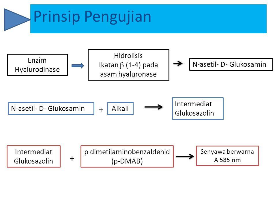 bufer asetat (0.1 M, pH 3.5)  Sodium asetat (0.1 M)  Asam asetat glasial (0.1 M) Enzim hyaluronidase Potassium hyaluronate kalsium klorida(2.5 mM) Sodium hidroksida (0.4 N) Potassium tetraborate 0.8 N, pH 9.1, (dengan penambahan KOH 5 M) p-Dimethylaminobenzaldehyde HCL 10N Air bebas ion Sampel Uji Screw cap test tubes (Pyrex) Mikropipet Water bath Timer UV/VIS spectrophotometer pH meter Pipet Volumetri Beakers Labu tentukur Measuring cylinders Peralatan dan Bahan Bahan Peralatan