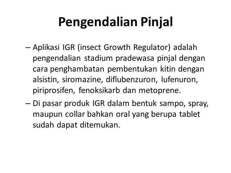 – Aplikasi IGR (insect Growth Regulator) adalah pengendalian stadium pradewasa pinjal dengan cara penghambatan pembentukan kitin dengan alsistin, siro