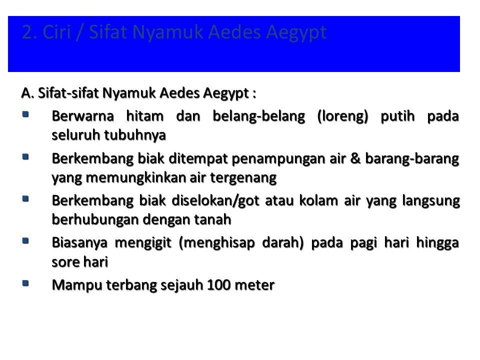2. Ciri / Sifat Nyamuk Aedes Aegypt A. Sifat-sifat Nyamuk Aedes Aegypt :  Berwarna hitam dan belang-belang (loreng) putih pada seluruh tubuhnya  Ber