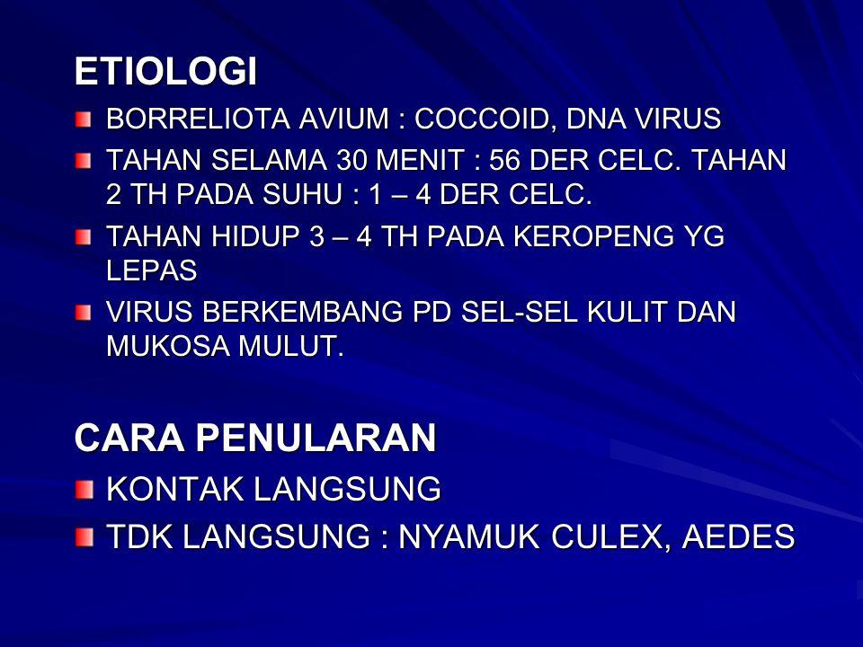 ETIOLOGI BORRELIOTA AVIUM : COCCOID, DNA VIRUS TAHAN SELAMA 30 MENIT : 56 DER CELC. TAHAN 2 TH PADA SUHU : 1 – 4 DER CELC. TAHAN HIDUP 3 – 4 TH PADA K
