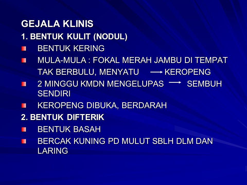 GEJALA KLINIS 1. BENTUK KULIT (NODUL) BENTUK KERING MULA-MULA : FOKAL MERAH JAMBU DI TEMPAT TAK BERBULU, MENYATU KEROPENG 2 MINGGU KMDN MENGELUPAS SEM