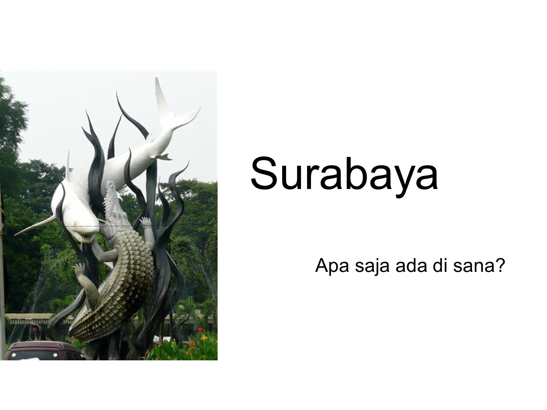 Surabaya Apa saja ada di sana