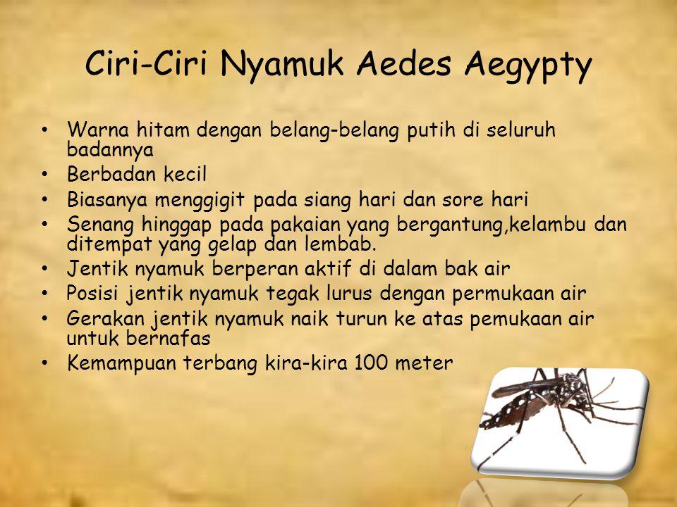 Penyebab Demam Berdarah Dengue (DBD) Penyebab Demam Berdarah Dengue adalah karena adanya virus dengue dan ditularkan melalui gigitan nyamuk Aedes Aegypty.
