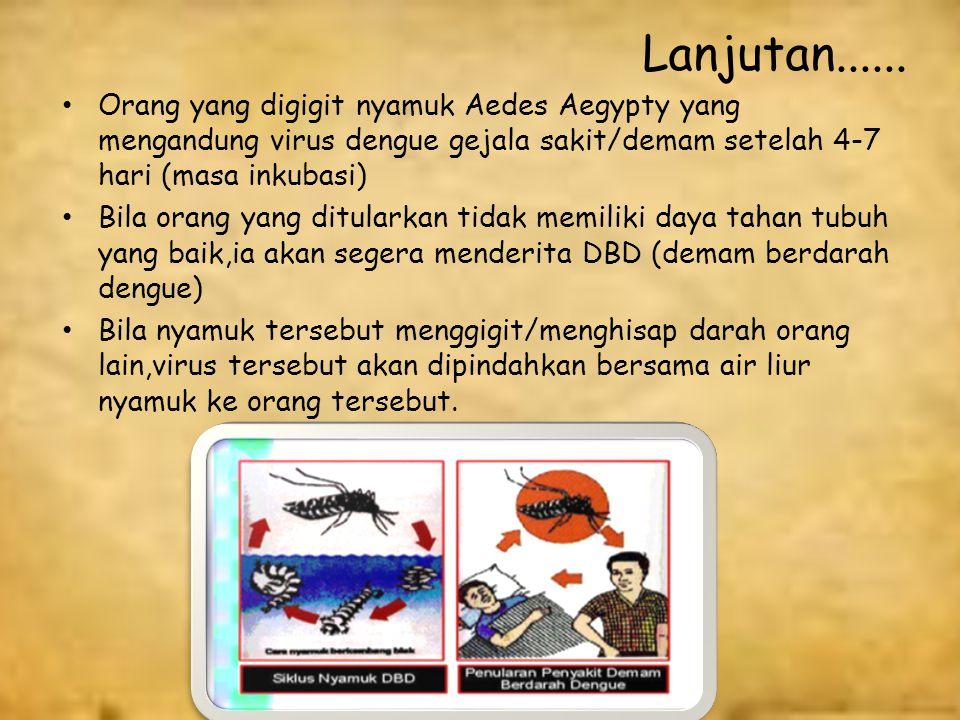 Penularan Demam Berdarah Dengue (DBD) Demam berdarah dengue hanya dapat ditularkan oleh gigitan nyamuk Aedes Aegypty betina,yang tersebar luas di rumah-rumah dan tempat-tempat umum (Sekolah,Pasar,Terminal,Warung dsb) Nyamuk ini mendapatkan virus dengue waktu menggigit/menghisap darah orang yang sakit DBD (Demam Berdarah Dengue) atau orang yang tidak sakit tetapi dalam darahnya terdapat Virus Dengue.