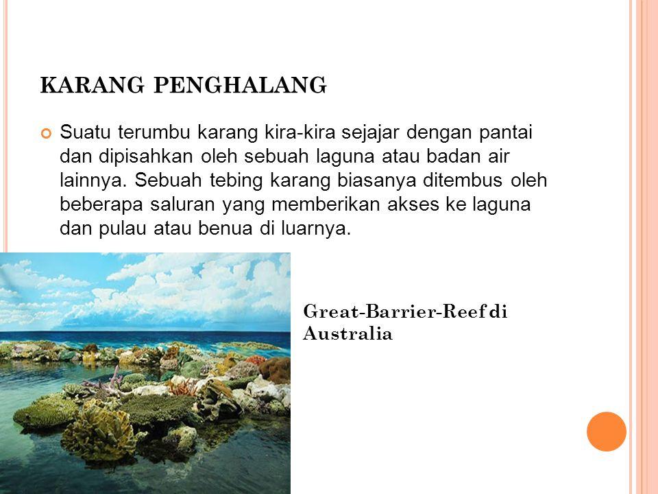 KARANG PENGHALANG Suatu terumbu karang kira-kira sejajar dengan pantai dan dipisahkan oleh sebuah laguna atau badan air lainnya. Sebuah tebing karang