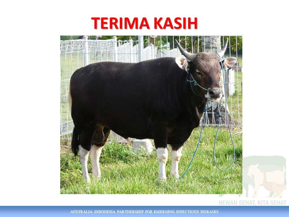 AUSTRALIA INDONESIA PARTNERSHIP FOR EMERGING INFECTIOUS DISEASES TERIMA KASIH