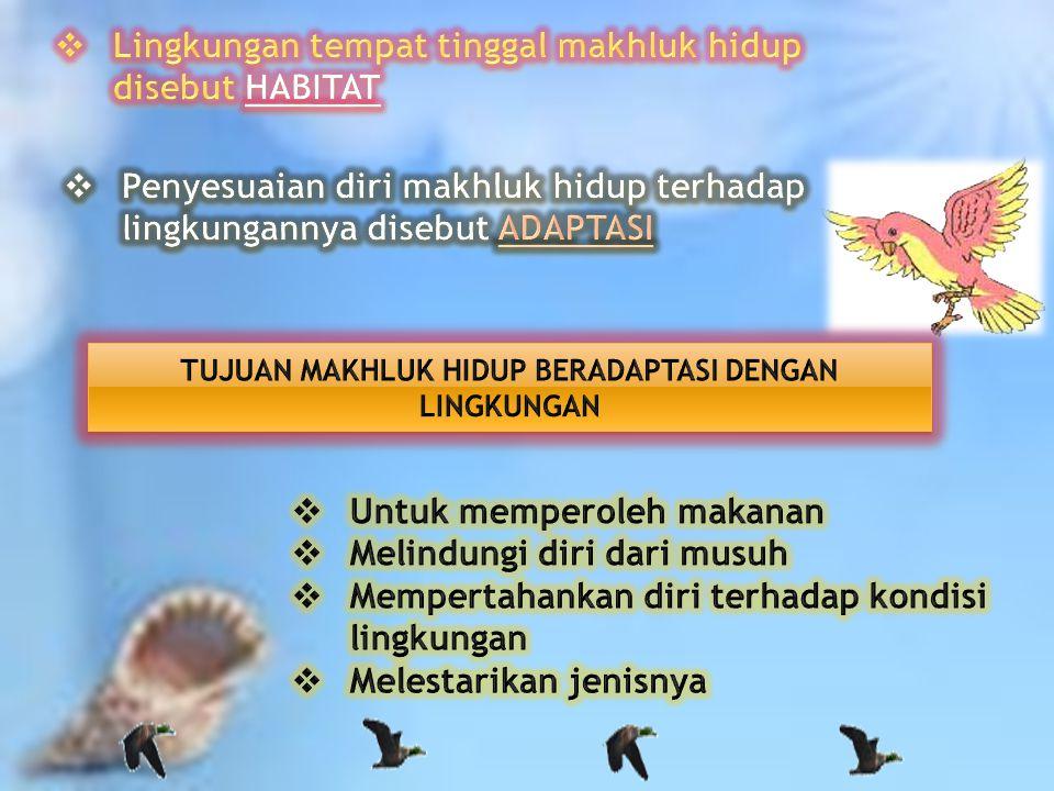 Free Powerpoint Templates Page 2 DISUSUN OLEH : Estin Farida SD Muhammadiyah Sapen Yogyakarta 2011