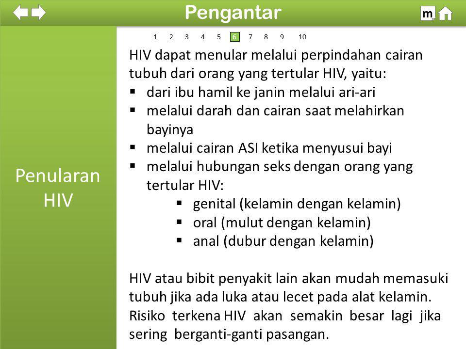 Kelompok Masyarakat yang Beresiko Tinggi Tertular HIV/AIDS 100% SDKI 2012 Pengantar m 1 Kalangan homo seksual Pekerja Seks Komersial (PSK/WTS) Pelanggan PSK/WTS Pecandu obat-obatan cara suntikan Anak dari ibu penderita HIV/AIDS Pasangan penderita HIV/AIDS