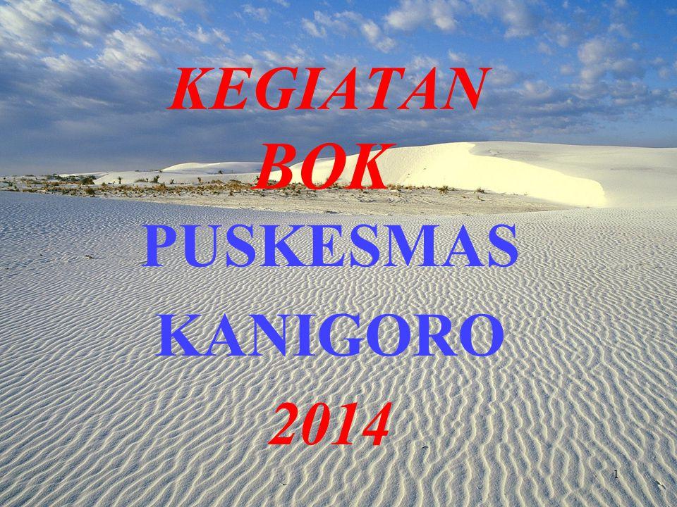 KEGIATAN BOK PUSKESMAS KANIGORO 2014 1