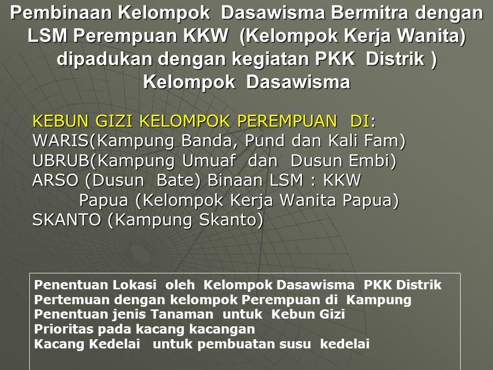 Pembinaan Kelompok Dasawisma Bermitra dengan LSM Perempuan KKW (Kelompok Kerja Wanita) dipadukan dengan kegiatan PKK Distrik ) Kelompok Dasawisma KEBUN GIZI KELOMPOK PEREMPUAN DI: WARIS(Kampung Banda, Pund dan Kali Fam) UBRUB(Kampung Umuaf dan Dusun Embi) ARSO (Dusun Bate) Binaan LSM : KKW Papua (Kelompok Kerja Wanita Papua) Papua (Kelompok Kerja Wanita Papua) SKANTO (Kampung Skanto) Penentuan Lokasi oleh Kelompok Dasawisma PKK Distrik Pertemuan dengan kelompok Perempuan di Kampung Penentuan jenis Tanaman untuk Kebun Gizi Prioritas pada kacang kacangan Kacang Kedelai untuk pembuatan susu kedelai