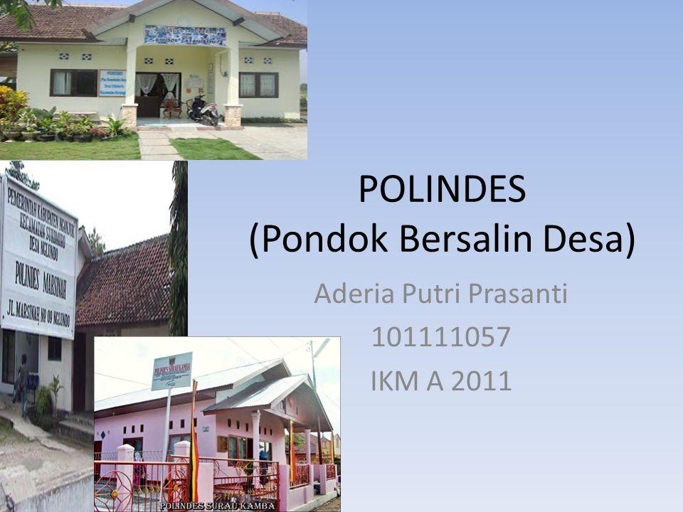 POLINDES (Pondok Bersalin Desa) Aderia Putri Prasanti 101111057 IKM A 2011
