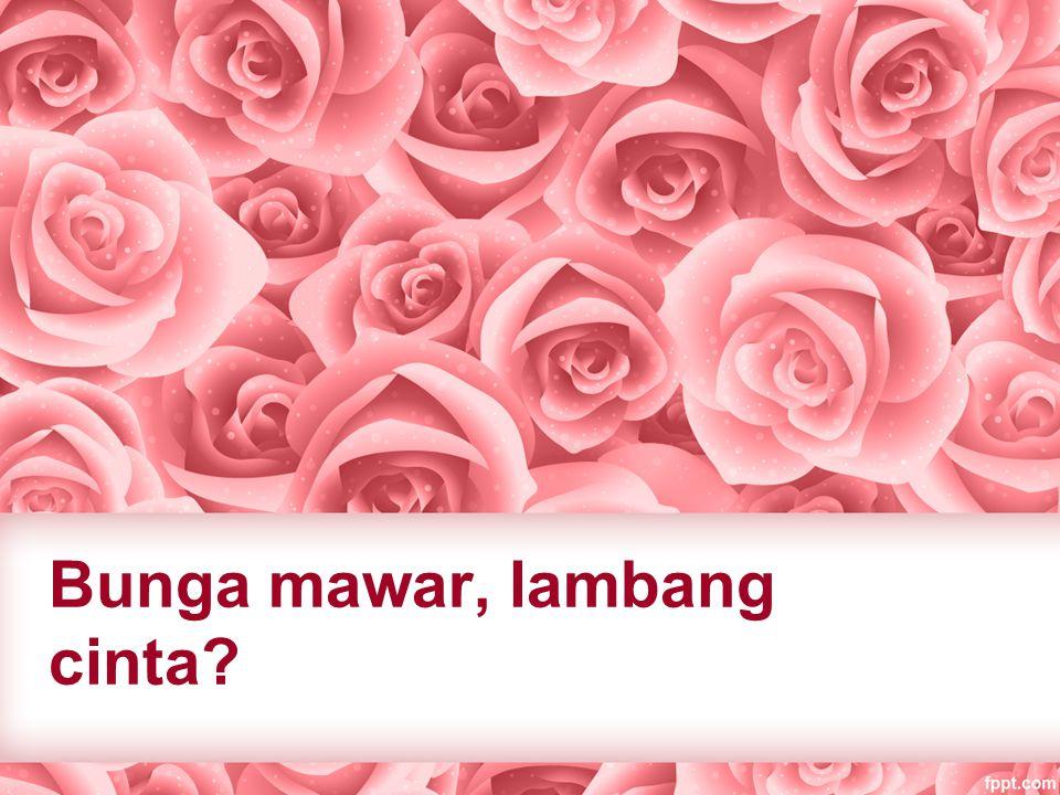 Bunga mawar, lambang cinta?