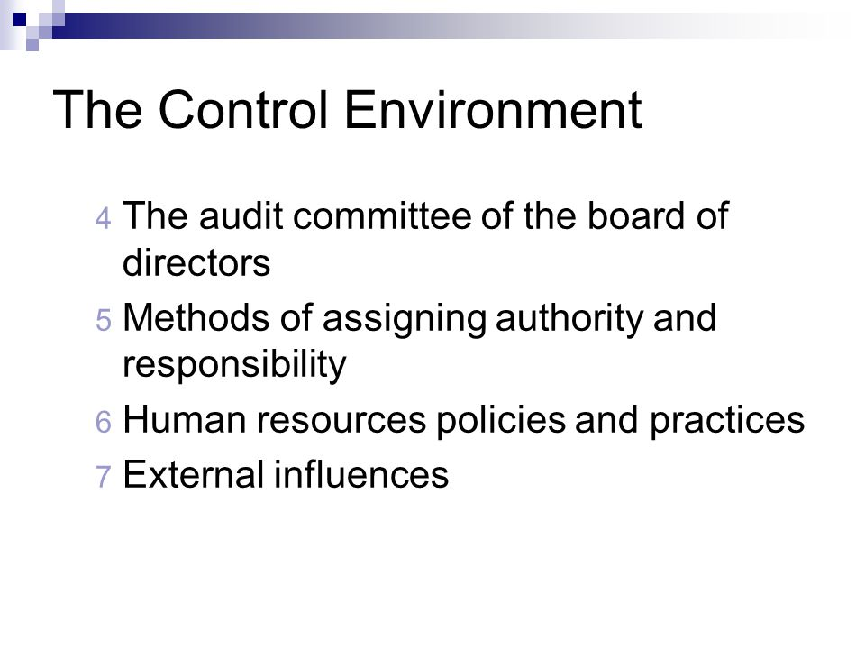 The Control Environment 4 The audit committee of the board of directors 5 Methods of assigning authority and responsibility 6 Human resources policies