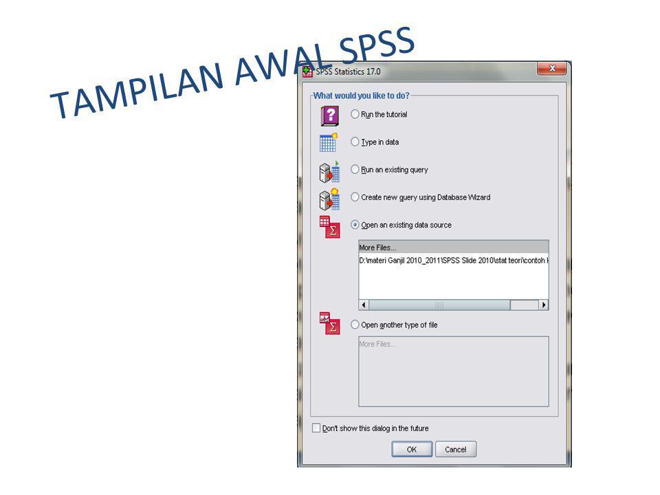 Tampilan Jendela SPSS Data ViewVariabel View Data Editor
