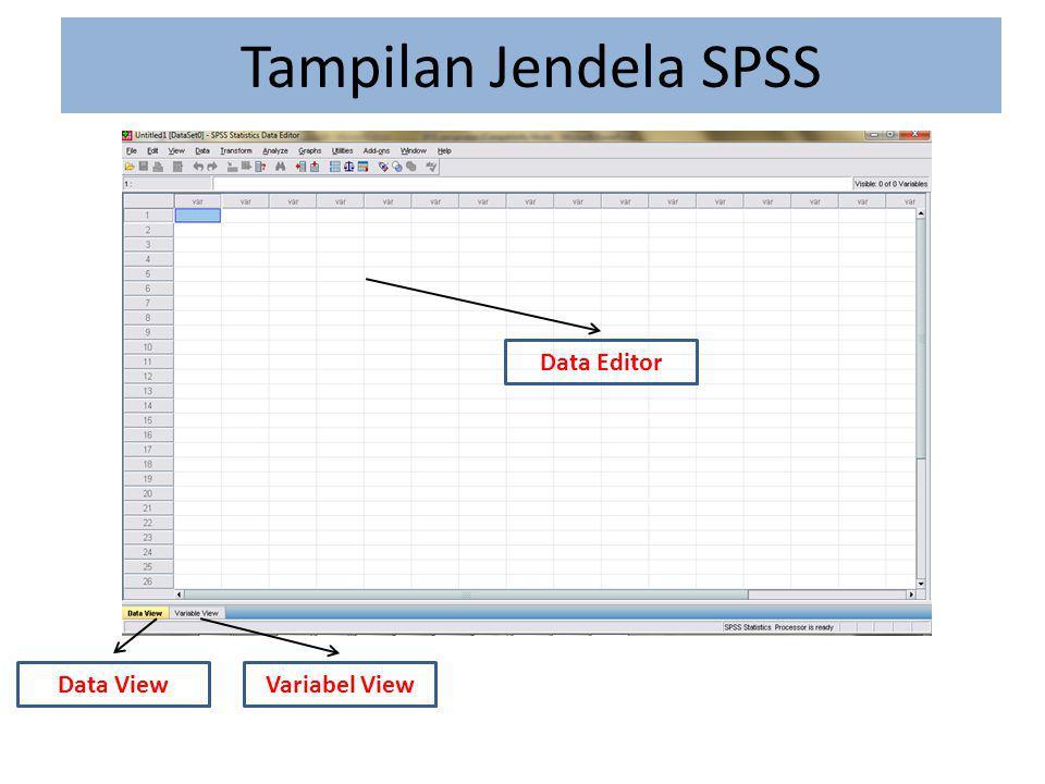 Menu SPSS File berisi fasilitas pengelolaan atau manajemen data dan file.