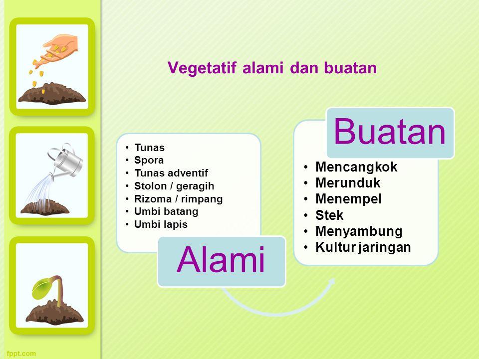 Vegetatif alami dan buatan Tunas Spora Tunas adventif Stolon / geragih Rizoma / rimpang Umbi batang Umbi lapis Alami Mencangkok Merunduk Menempel Stek