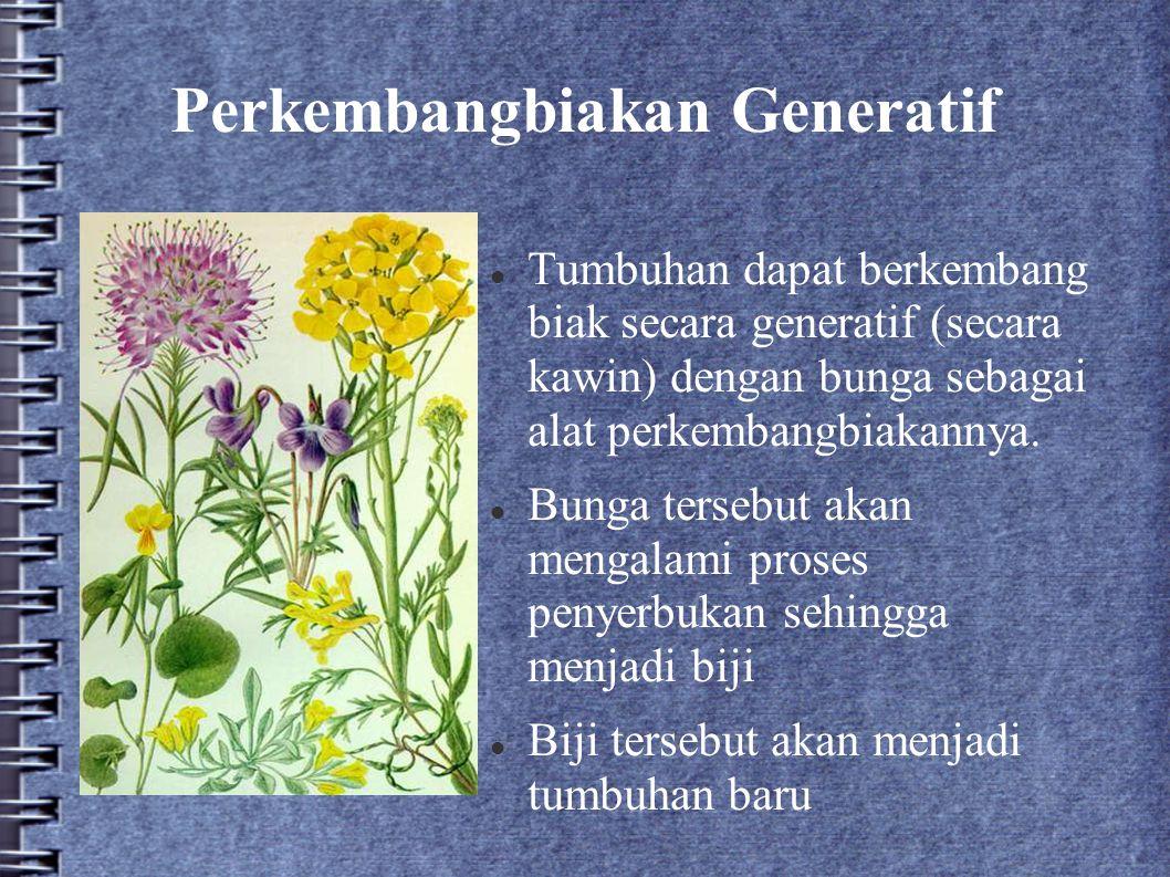 Perkembangbiakan Generatif Tumbuhan dapat berkembang biak secara generatif (secara kawin) dengan bunga sebagai alat perkembangbiakannya. Bunga tersebu