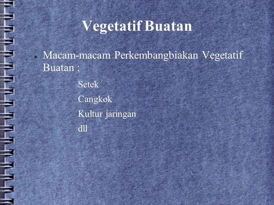 Vegetatif Buatan Macam-macam Perkembangbiakan Vegetatif Buatan :  Setek  Cangkok  Kultur jaringan  dll