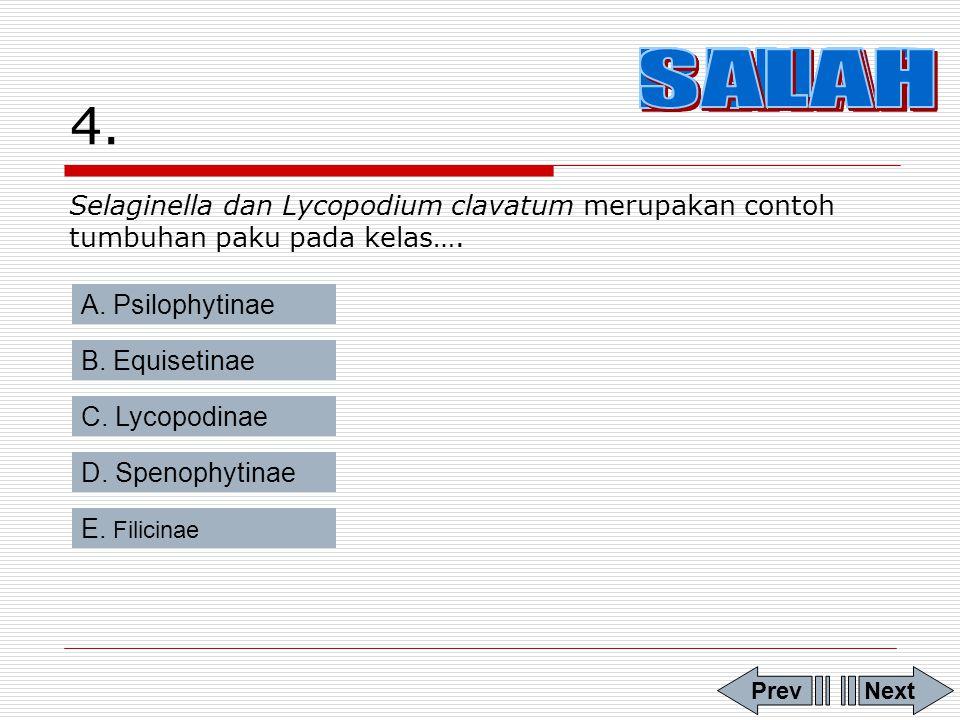 3.Tumbuhan paku di bawah ini yang termasuk jenis paku homospora adalah… A.