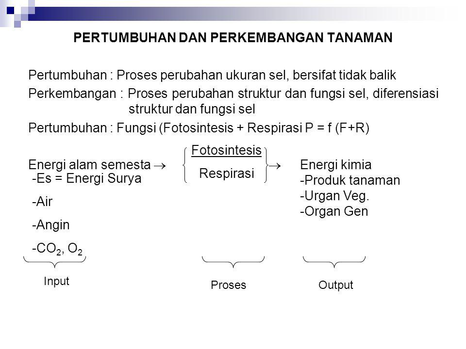PERTUMBUHAN DAN PERKEMBANGAN TANAMAN Pertumbuhan : Proses perubahan ukuran sel, bersifat tidak balik Perkembangan : Proses perubahan struktur dan fung