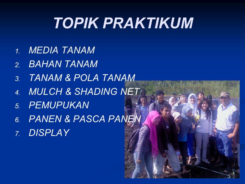 TOPIK PRAKTIKUM 1. 1. MEDIA TANAM 2. 2. BAHAN TANAM 3. 3. TANAM & POLA TANAM 4. 4. MULCH & SHADING NET 5. 5. PEMUPUKAN 6. 6. PANEN & PASCA PANEN 7. 7.