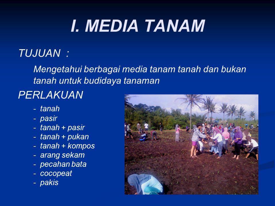I. MEDIA TANAM TUJUAN : Mengetahui berbagai media tanam tanah dan bukan tanah untuk budidaya tanaman PERLAKUAN - tanah - pasir - tanah + pasir - tanah