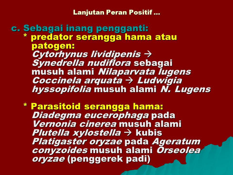 Lanjutan Peran Positif … c. Sebagai inang pengganti: * predator serangga hama atau patogen: Cytorhynus lividipenis  Synedrella nudiflora sebagai musu
