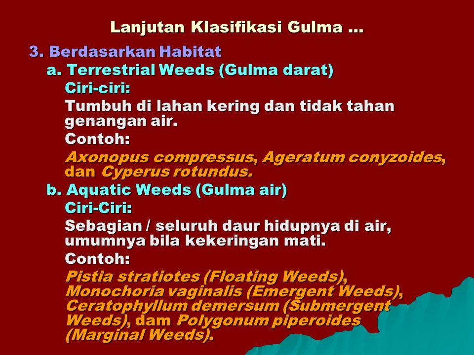 Lanjutan Klasifikasi Gulma … 3. Berdasarkan Habitat a. Terrestrial Weeds (Gulma darat) Ciri-ciri: Tumbuh di lahan kering dan tidak tahan genangan air.