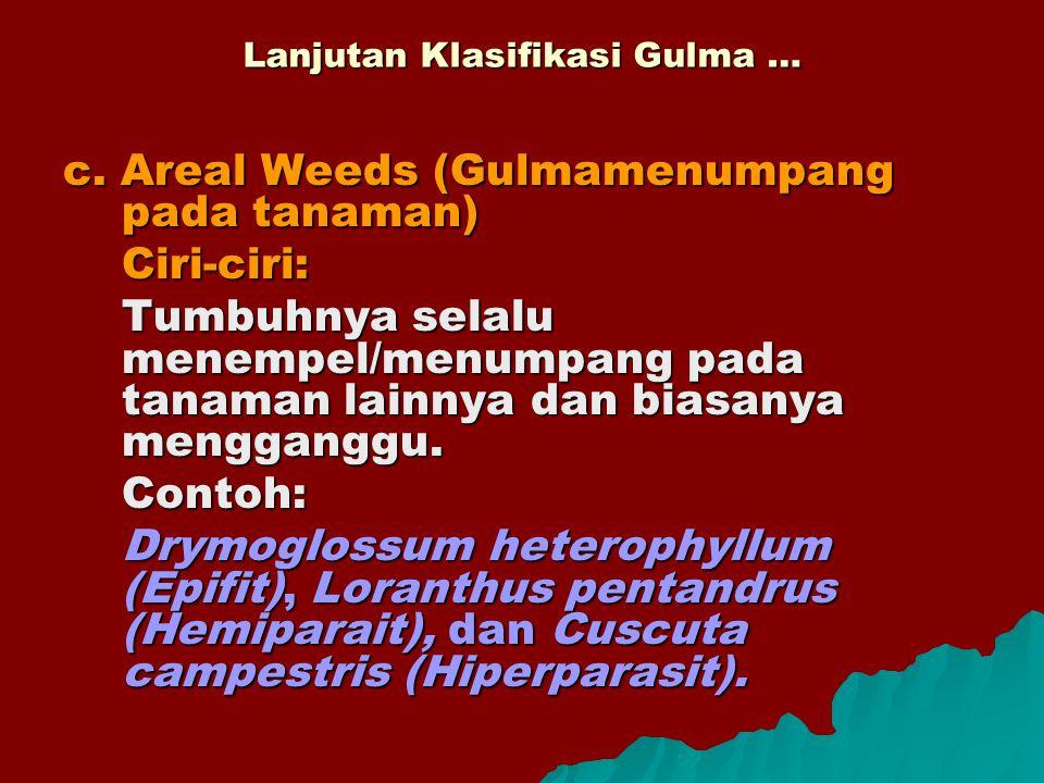 Lanjutan Klasifikasi Gulma … c. Areal Weeds (Gulmamenumpang pada tanaman) Ciri-ciri: Tumbuhnya selalu menempel/menumpang pada tanaman lainnya dan bias