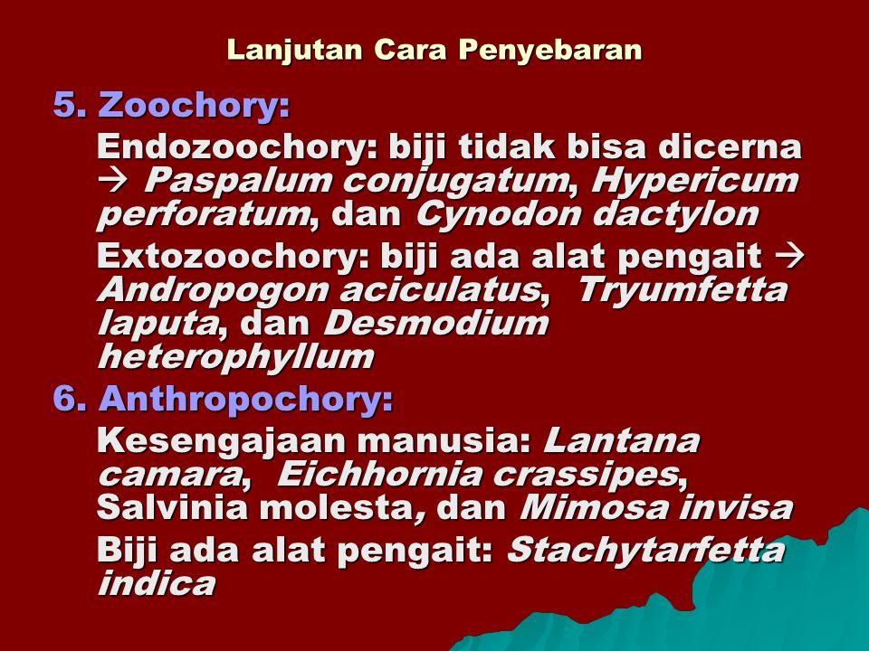 Lanjutan Cara Penyebaran 5. Zoochory: Endozoochory: biji tidak bisa dicerna  Paspalum conjugatum, Hypericum perforatum, dan Cynodon dactylon Extozooc