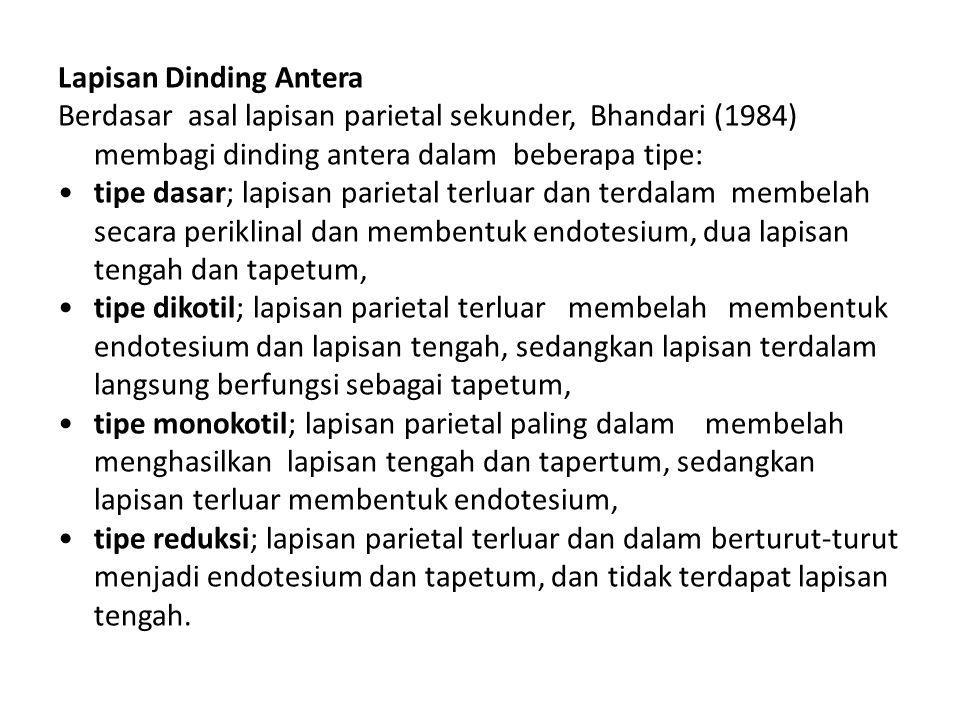 Lapisan Dinding Antera Berdasar asal lapisan parietal sekunder, Bhandari (1984) membagi dinding antera dalam beberapa tipe: tipe dasar; lapisan pariet